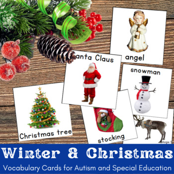 Autism & Special Needs Communication Cards - Winter and Christmas