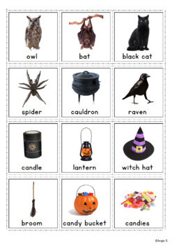 Halloween Vocabulary Photo Flashcards