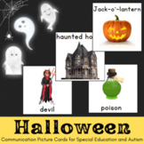 Halloween Vocabulary Cards with Photographs