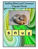 Autism: Spelling Blends and Consonant Digraphs