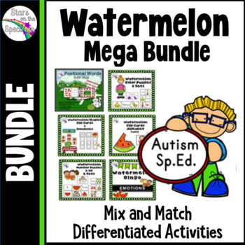 ESY Summer Activities Basic Skills Autism Mega Bundle