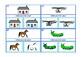 Same Different Visual Discrimination Skills Autism Special Education