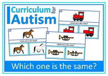 Visual Thinking Matching Skills Clip Cards, Autism, Specia