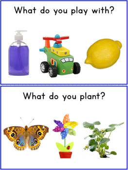 What Questions Autism Worksheets for SPED, Speech Therapy Set 2