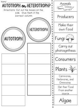 Autotroph or Heterotroph? Cut and Paste Sorting Activity