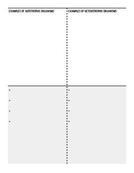 Autotroph vs. Heterotroph Fold and Sort Activity