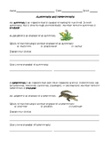 Autotrophs vs. Heterotrophs worksheet