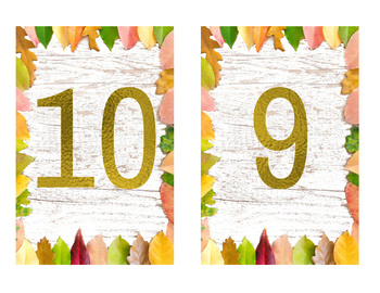 Autumn 1-20 Number Cards