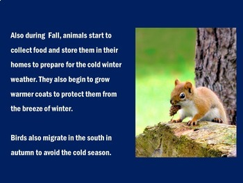 Seasons Activity | Four Seasons PowerPoint | Seasons PowerPoint | FALL