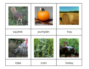 Fall Vocabulary Cards / 3-Part Montessori