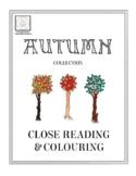 Autumn: A Reading Comprehension Collection