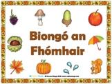 Autumn Bingo (Gaeilge)