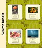 Autumn Bundle-Nature Education Unit-Stage 2 (Magic Forest