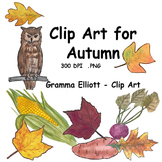 Autumn Clip Art in Realistic Color and BW