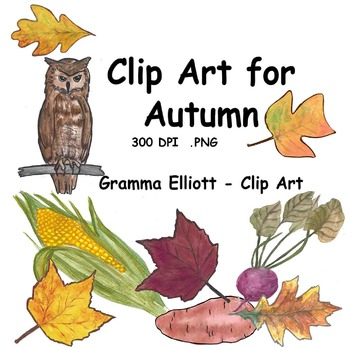 Realistic Clip Art - Autumn - Fall Leaves - Pumpkin - Owl