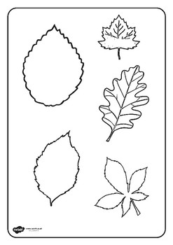Autumn Coloring Sheets