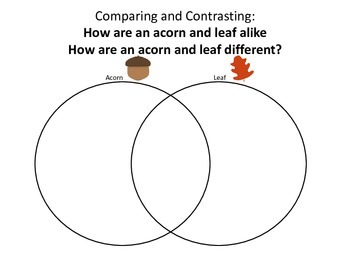 Autumn Describing and Comparing/Contrasting