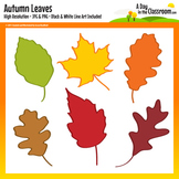 Autumn / Fall Leaf Clip Art Graphics