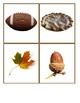 Autumn/Fall Montessori Matching Cards