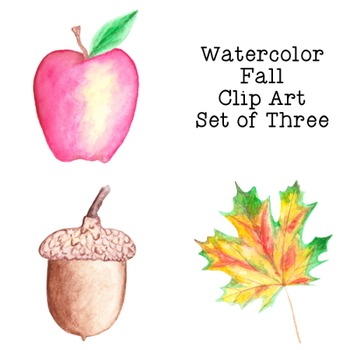 Autumn Fall Watercolor Clip Art PNG JPG Commercial or Personal Acorn Leaf Apple