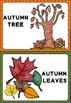 Autumn Flashcards