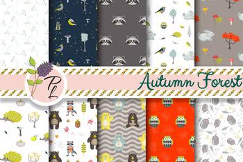 Autumn Forest Seamless Patterns