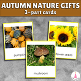 Fall Nature Gifts Montessori 3-part cards