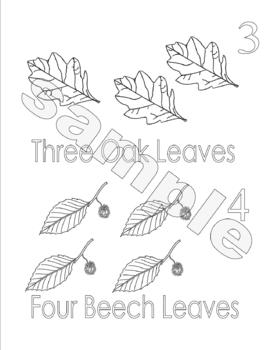 Autumn Leaf Counting Coloring Booklet