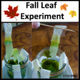 Autumn Leaf Experiment With Interactive Notebook Flaps NGS