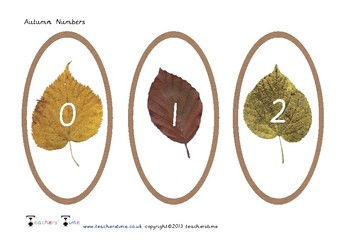 Autumn Leaf Numbers 0 to 20