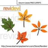 Autumn Leaves Clip Art Freebie