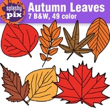 Autumn Leaves Clipart