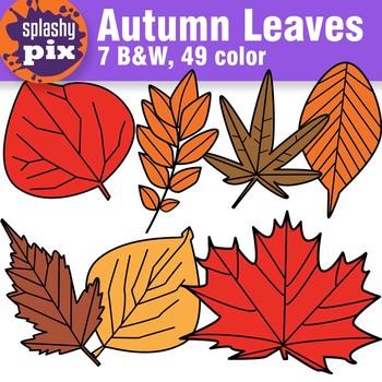 Autumn Leaves Clipart