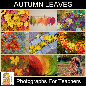 Autumn Leaves Photograph Pack
