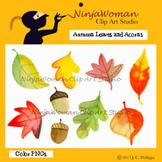 Autumn Leaves and Acorns Clip Art