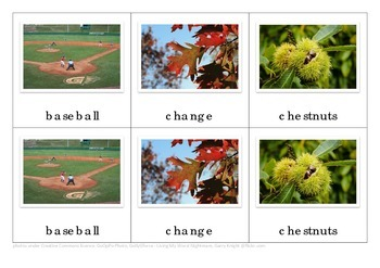 Autumn Montessori Nomenclature Cards