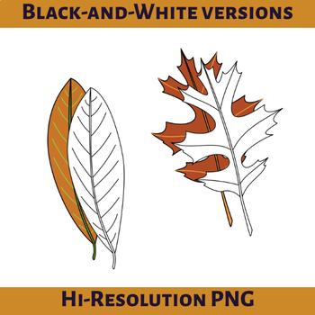 Autumn Oak Leaves Clip Art