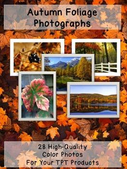 Autumn Fall  Photos