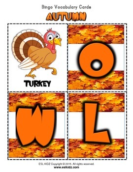 "Autumn ""Owl"" Bingo 3X3  w/flashcards and letters"