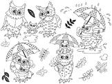 Autumn Owls Clipart - Digital Vector Owls, Baby Owl