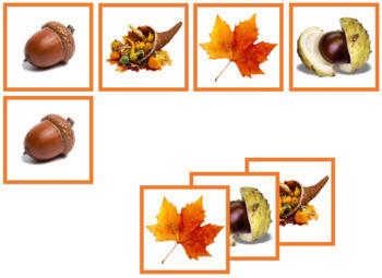 Autumn Photo Matching Cards