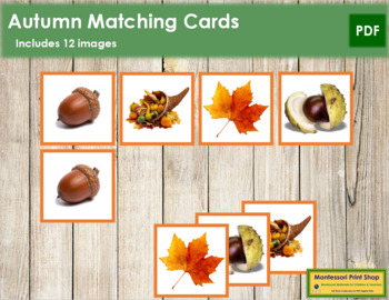 Autumn Photo Matching Cards
