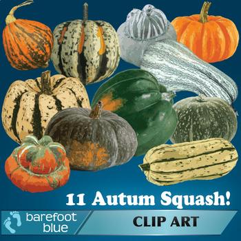 Autumn Pumpkin and Squash Clip Art