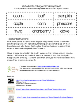 Autumn Sink or Float Worksheet