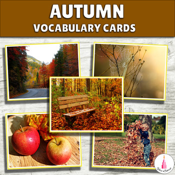 Autumn Vocabulary Cards