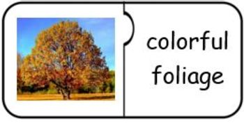 Autumn Vocabulary/Photo Jigsaw Puzzle Match