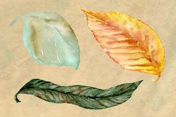Autumn Waltz - Clip Art Set