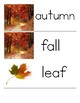 Autumn Word Wall