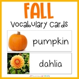 Autumn Word Wall | Vocabulary Cards | Print & D'Nealian fonts
