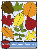 Autumn leaves Cliparts